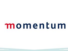 Risk-Logos_0017_Momentum